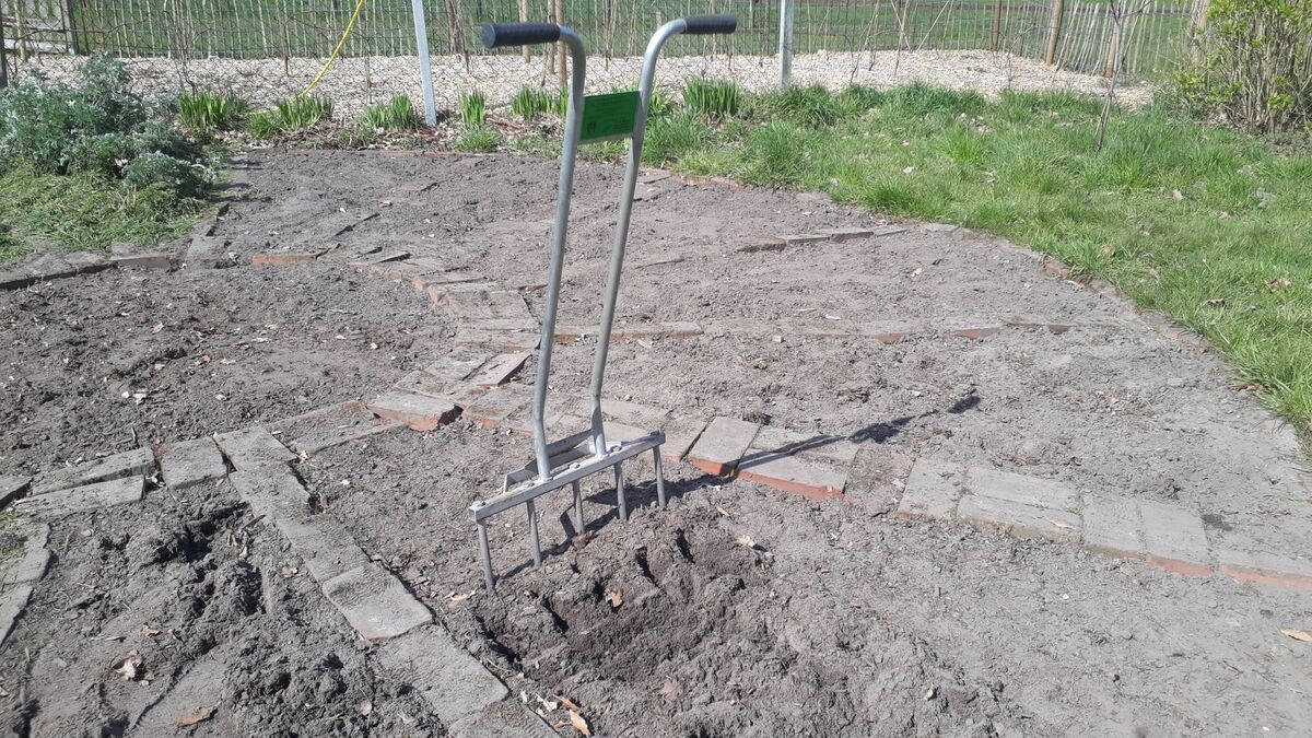 <span></span><div>...using the potatoes digger as a broad fork to loosen the earth ...</div>
