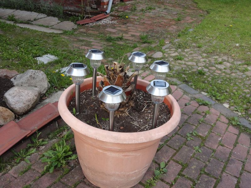 Solar garden lights - <span>donated by Evelin & Werner</span>
