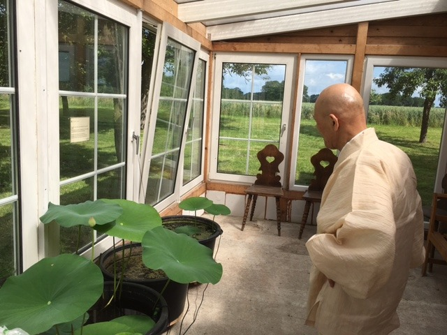 <span></span><div>Roshi impressed about the two first lotus buds</div>