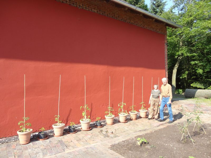 Gertrud and Ralf - <span>with their beautiful donation of tomatoe and pepper plants</span>