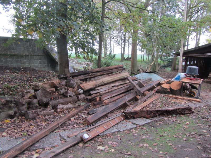 now cleaning up - <span>the one year old fire wood pile...</span>